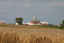 A prairie wheat farm