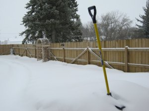 Spring in Saskatchewan.  Photo (c) 2011 by  Sandra Bell Kirchman